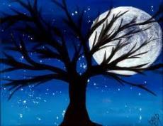 Moonlit Night....