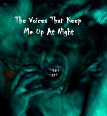 THE VOICES THAT KEEP ME UP AT NIGHT