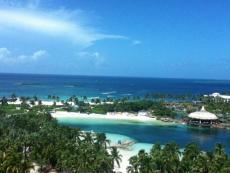 Newfound Paradise