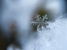 Just a snowflake