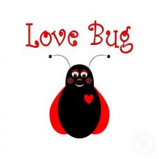 The Love Bug Fever