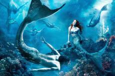 Mermaid's Tale :)
