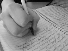 The Dork Journal