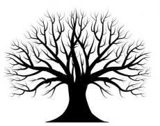 'The Tree'