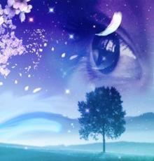 """My Dream"""