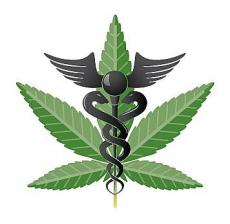 I Get By - A Persuasive Essay Towards Medical Cannabis