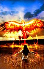 The Rising Pheonix