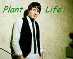 Plant Life- Owl city