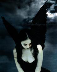 Dark Heart..