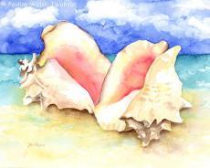 Shell Poem
