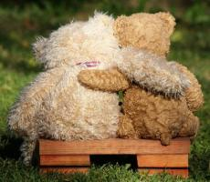 A Teddy to call my own