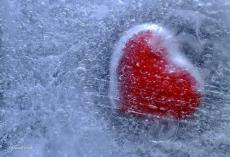 Frozen glass Bleeding Heart
