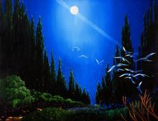 Moonlight Meadow
