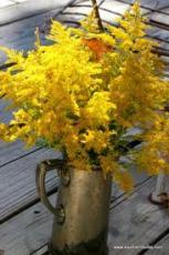 Golden Rod Bouquets