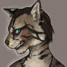 A Tale Of A Khajiit - CHARACTER PICTURES