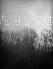 The Secret World (XIII)