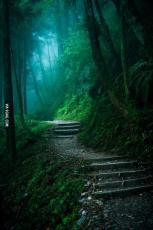 A secret little place
