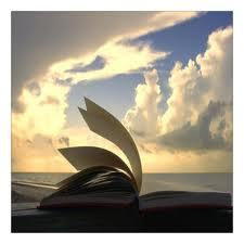 WILD BOOKS