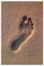 MY FEET DON'T FIT THE FOOTPRINTS