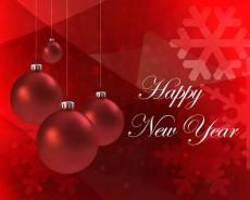 To Welcome New Year*