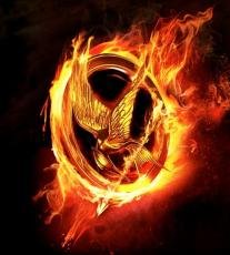 Losing What I Don't Deserve- A Hunger Games Fanfiction