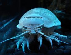 Giant Monster Pillbug