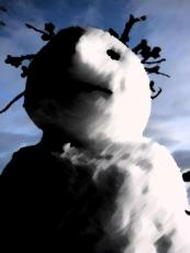 Bad Snow by Mark Gordon Palmer