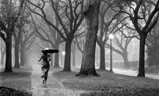 I breathe rain