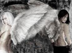 Betrayed angel haiku poem
