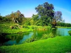 The Divine Paradise