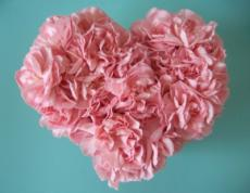 Thoughts of a Carnation Heart