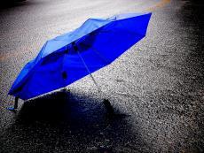 Forgotten Umbrella