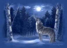 Wolf-Vang