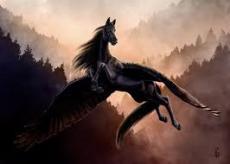 A Misunderstood Pegasus
