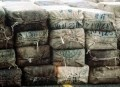 Marijuana Smuggling Blues