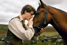 War Horse remembered