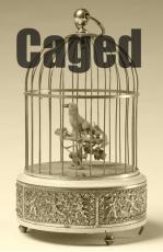 Caged Katiekoo