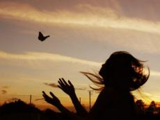 Maybe If I Could Fly...