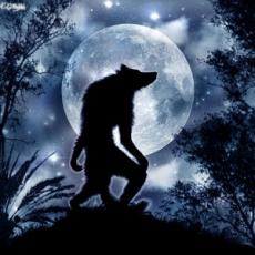 The Wolfs Tale.