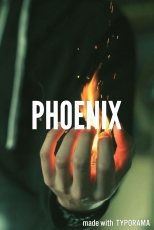 The Phoenix( Chapter 2: Burning?)