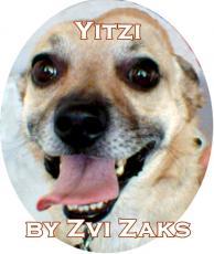 Yitzi