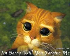 I am Sorry for everything and I forgive you