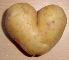 Potato Love