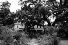 Broken home: A tall tale