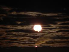 The_Night