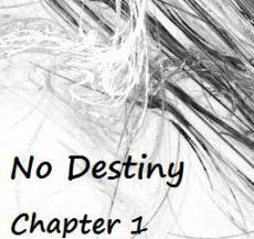 Elzeranovas challenge: No Destiny: Chapter One