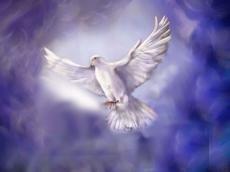 I Pray You Set Me Free