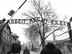 A Day at Auschwitz