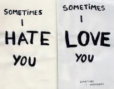 I Hate To Love You