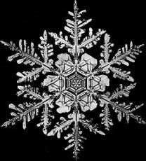 A Simple SnowFlake